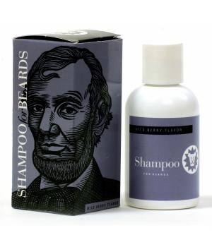BS Abraham Lincoln.jpg