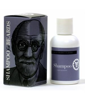 BS Sigmund Freud.jpg