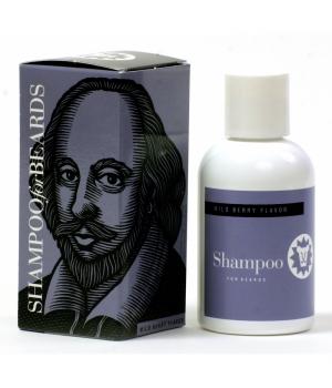 BS William Shakespeare.jpg